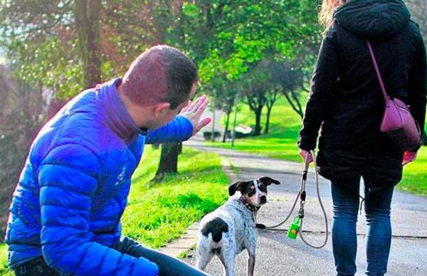 custodia mascota separación